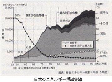 日本のエネルギー供給実績.jpg