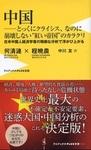 在米中国人経済学者の中国分析本.jpg