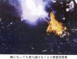 朝まで燃え続ける123便墜落現場の火災.jpg