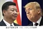 習近平国家主席VSトランプ大統領.jpg