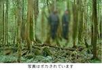 自衛隊員の持っていた2枚の写真のうちの1枚.jpg