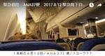 JAL123便と酷似しているANA37便.jpg