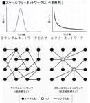 スケールフリーネットワークとは何か.jpg