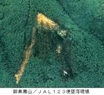 JAL123便墜落現場/御巣鷹の屋根.jpg